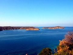 Adriatyk (D) (2)