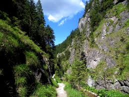 Juraniowa Dolina