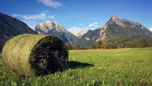 Słowenia alpy (D)